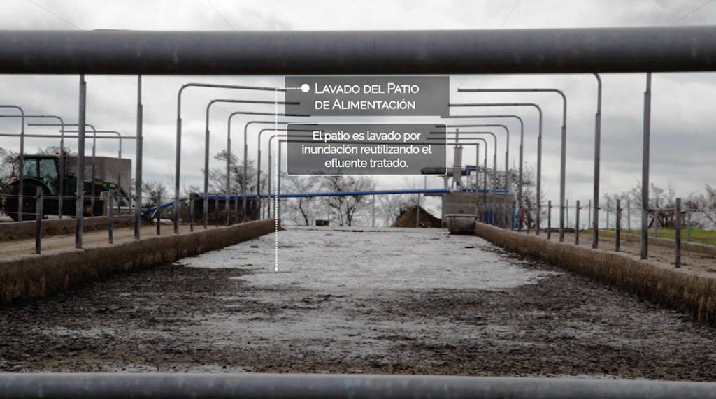 Primer tambo uruguayo que genera energía eléctrica con biogás con residuos de la producción y lo vende a UTE
